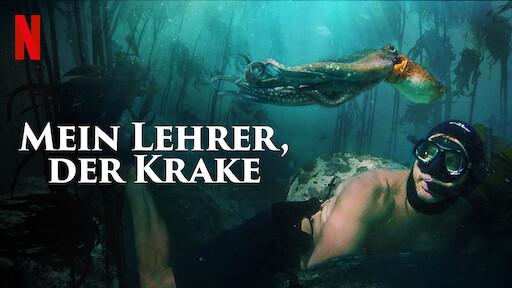 Krakenkultur: «Mein Lehrer, der Krake» von Craig Foster